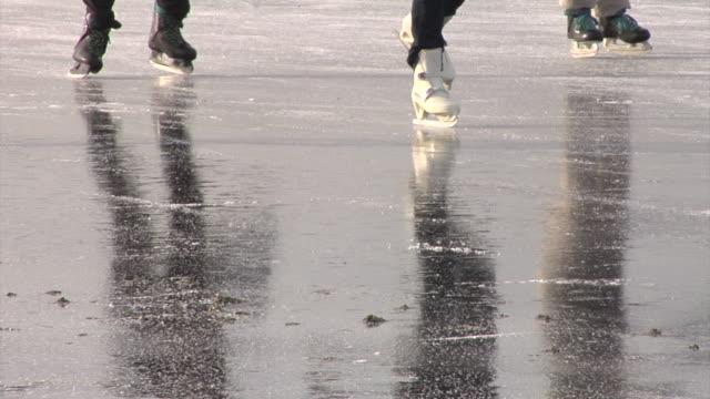 Ice skating through the Dutch polders