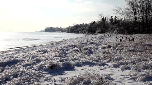 stockvideo's en b-roll-footage met ice storm aftermath - ontariomeer