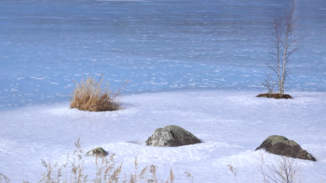 Ice surface of lake