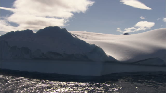 ms, pan, iceberg, antarctica - insel south georgia island stock-videos und b-roll-filmmaterial