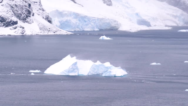 iceberg hit by the wind in antarctica - antarctic peninsula stock videos & royalty-free footage