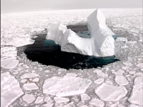 vidéos et rushes de ms, iceberg in pack ice, canada - iceberg bloc de glace