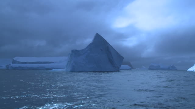 iceberg. scenic track past berd from ship. laurie island, south orkney islands, antarctica - 島点の映像素材/bロール