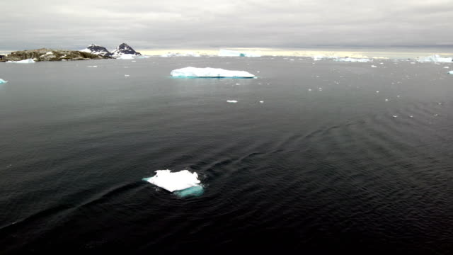 iceberg - antarctic ocean stock videos and b-roll footage