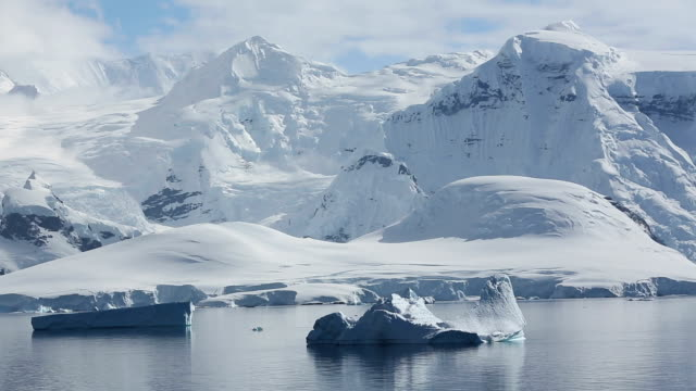 Icebergs and Antarctic coast