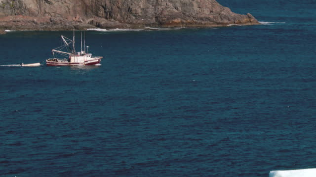 icebergs and boats - industria della pesca video stock e b–roll