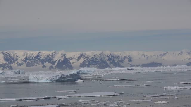 vídeos de stock, filmes e b-roll de icebergs and sea ice near crystal sound and the bisoce islands on they way to wards the polar circle, antarctica. - ice crystal