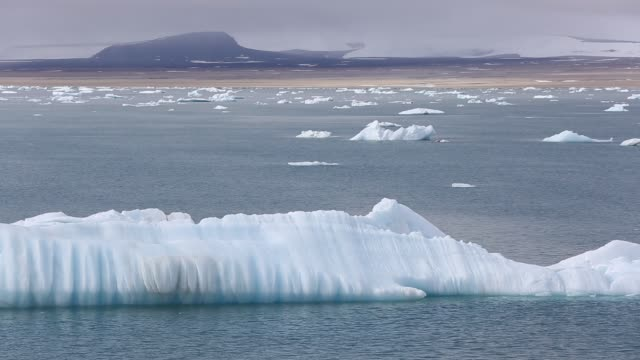 vidéos et rushes de icebergs from a glacier on nordauslandet in northern svalbard. all of svalbards glaciers are retreating, even in the north of the archiapelago despite only being around 600 miles from the north pole. - terre en vue