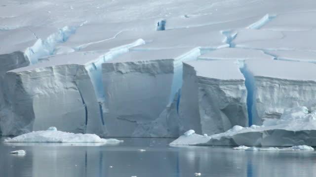 icebergs in front of ice shelf/glacier edge, antarctica - shelf stock videos & royalty-free footage