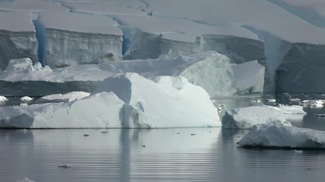 Icebergs in front of ice shelf/glacier edge, Antarctica