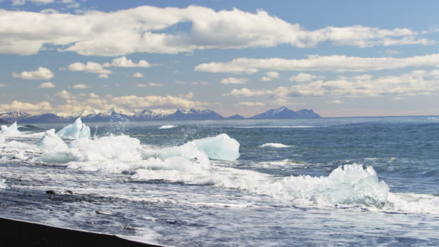 Icebergs in the waves on black sand beach in Iceland