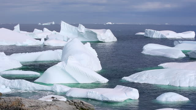 icebergs moving gently in small swells, petermann island - 30 sekunden oder länger stock-videos und b-roll-filmmaterial