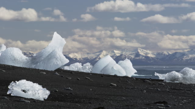 Icebergs on black sand beach in Iceland