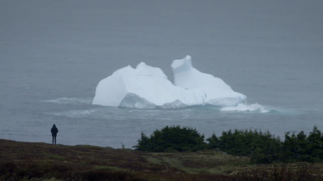 """icebergs seen from the canadian coast - """"bbc universal"""" stock videos & royalty-free footage"""