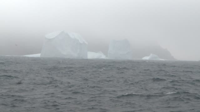 icebergs tower near the coast of antarctica. available in hd. - antarctic ocean stock videos and b-roll footage