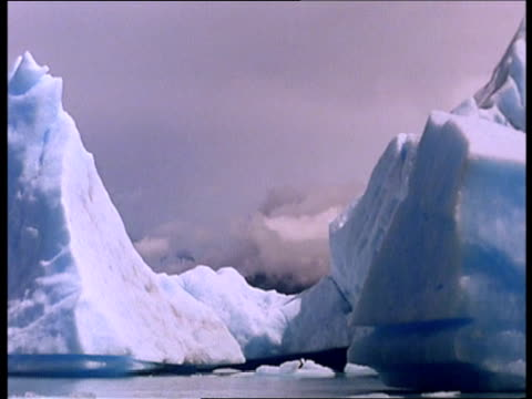 icebergs tower over water with mountains looming in the distance. - 水の形態点の映像素材/bロール
