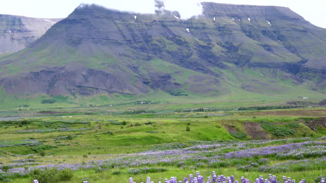 iceland landscape with mountain - trail ride stock videos and b-roll footage