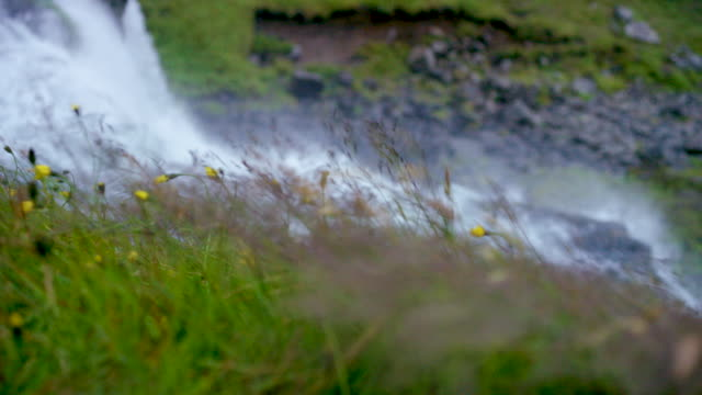 iceland waterfall - bud stock videos & royalty-free footage
