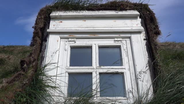 iceland window on a rooftop covered with grass - 農家の家点の映像素材/bロール