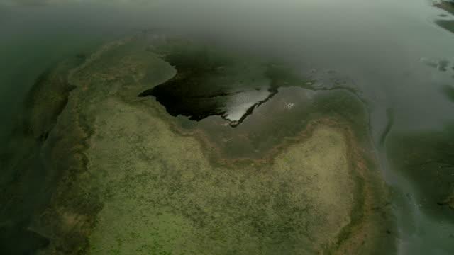 icelandic delta - ökosystem stock-videos und b-roll-filmmaterial
