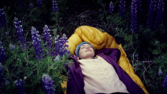Isländische Sommer. Entspannen Sie sich auf eine Wiese mit blühenden Lupinen weibliche backpacker