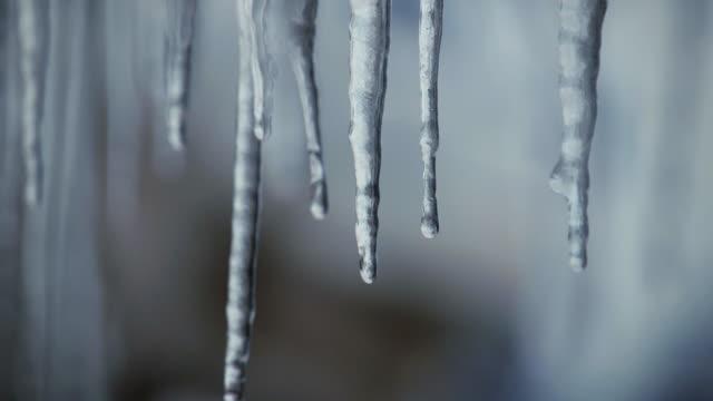 vídeos de stock, filmes e b-roll de icicle drip - pingente de gelo