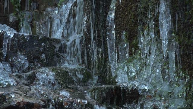 vídeos de stock, filmes e b-roll de icicles and ice sculptures at little forest brook, taben primeral forest, taben-rodt, saar valley, rhineland-palatinate, germany, europe - pingente de gelo