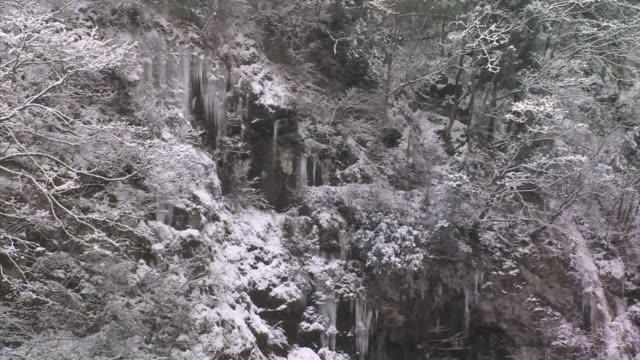 Icicles hanging on a cliffside, Honshu, Japan