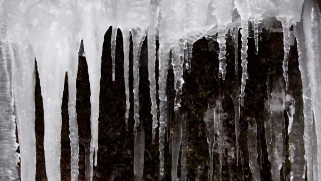 vídeos de stock, filmes e b-roll de icicles in winter with melting water, klingelsbach-schlucht, triefenstein, bavaria, germany - pingente de gelo