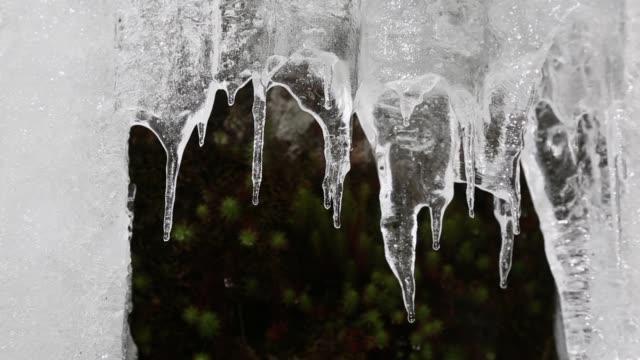 vídeos de stock, filmes e b-roll de derretimento de gelo - pingente de gelo