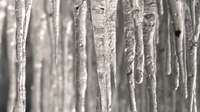 icicles melting, water drops - icicle stock videos and b-roll footage