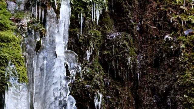 Icicles on mossy tuff rock in winter with melting water, Klingelsbach-Schlucht, Triefenstein, Bavaria, Germany