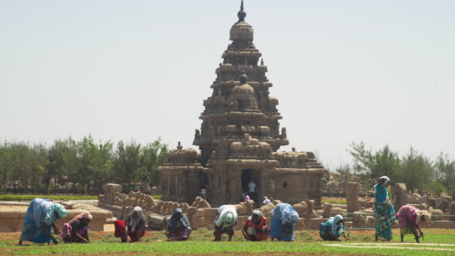 vídeos y material grabado en eventos de stock de iconic image of india. women with colourful traditional costume working in front of mamallapuram ancient temple. part of the group of monuments at mahabalipuram - pagoda templo