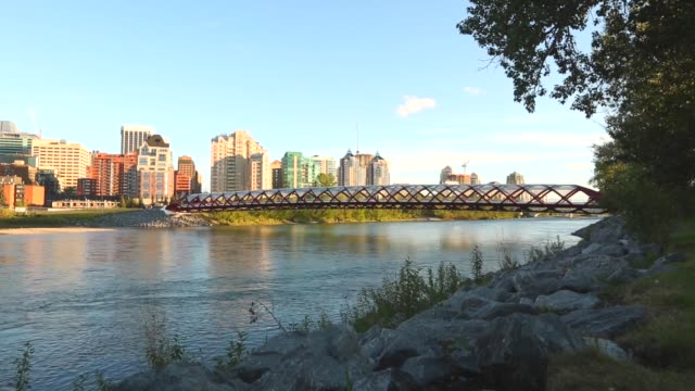 iconic peace bridge, calgary - calgary stock videos & royalty-free footage