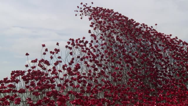 iconic tower of london poppy sculpture visits southend iconic tower of london poppy sculpture visits southend england essex southendonsea ext various... - installationskunst stock-videos und b-roll-filmmaterial