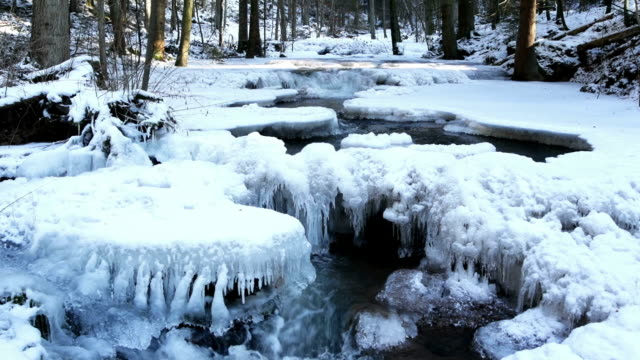icy forest creek cinemagraph - icicle stock videos and b-roll footage