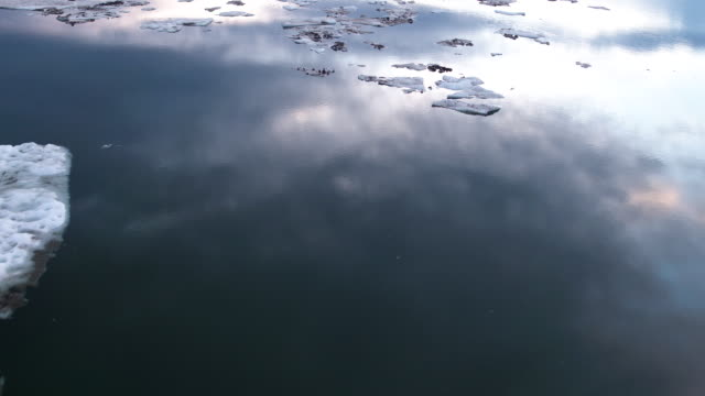 icy lake in northern canada at sunset, aerial - ice sheet stock videos & royalty-free footage