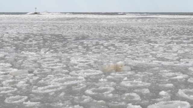 icy waves on lake michigan - great lakes stock videos & royalty-free footage