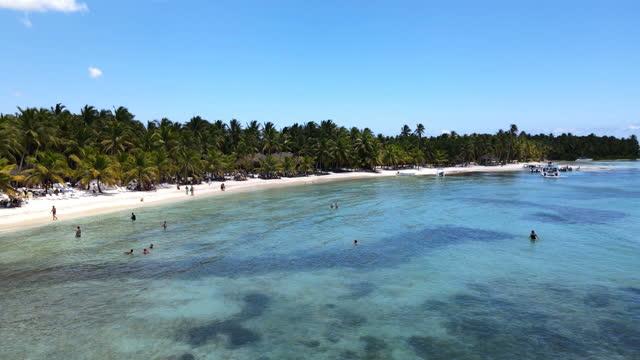 空からアイディリックカリブ海のビーチ - ドミニカ共和国点の映像素材/bロール
