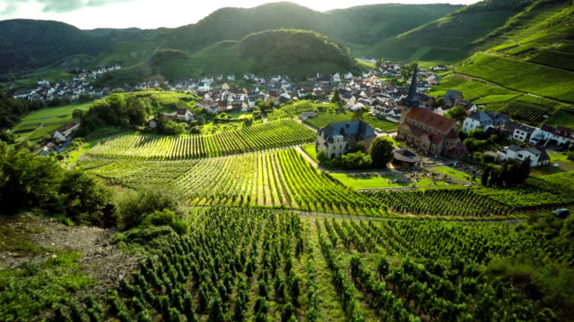 idyllic countryside with vineyards - motorway junction stock videos & royalty-free footage