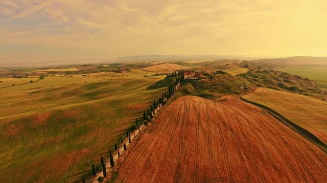 veduta aerea idilliaca estate in toscana - hill video stock e b–roll