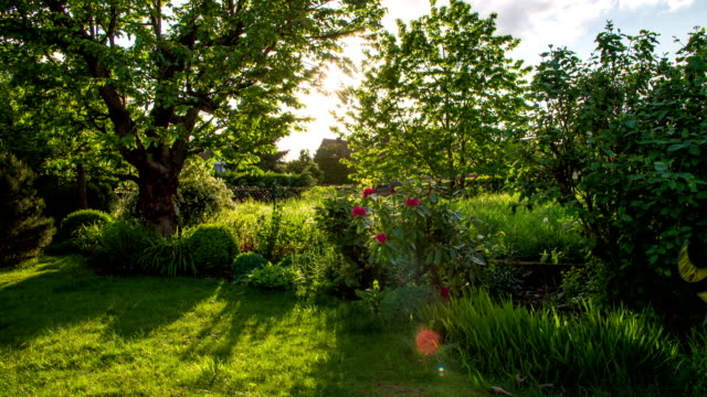 crane up: idyllic garden - lawn stock videos & royalty-free footage