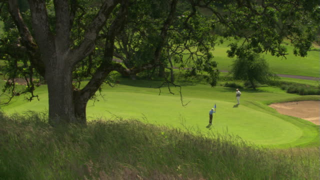 idyllic green - see other clips from this shoot 1271 stock videos & royalty-free footage
