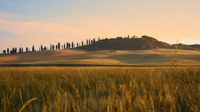 ds idyllic house in tuscan countryside - tuscany stock videos and b-roll footage