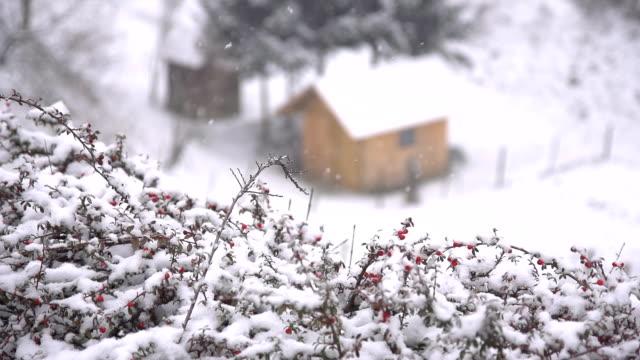 stockvideo's en b-roll-footage met hd super slow mo: idyllic house in winter - huisje