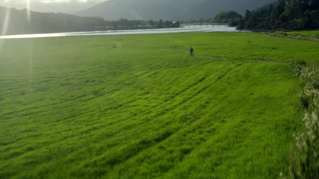 idyllic mountain landscape. drone point of view - zona erbosa video stock e b–roll