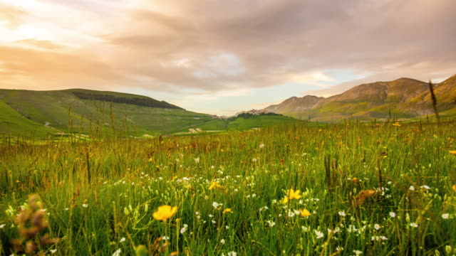 ws time lapse idyllic mountain meadow, castelluccio, umbria, italy - landscaped stock videos & royalty-free footage