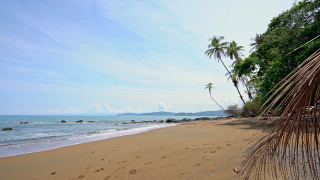 ws idyllic remote beach in costa rica - costa rica stock videos & royalty-free footage