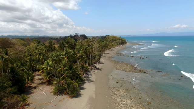 aerial idyllic remote beach in costa rica - costa rica video stock e b–roll
