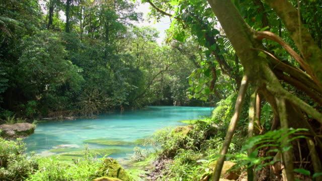ds idyllischen rio celeste - costa rica stock-videos und b-roll-filmmaterial